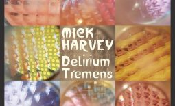 mick harvey,delirium tremens